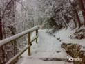 Previsioni Meteo Inverno 2014: scenari mensili